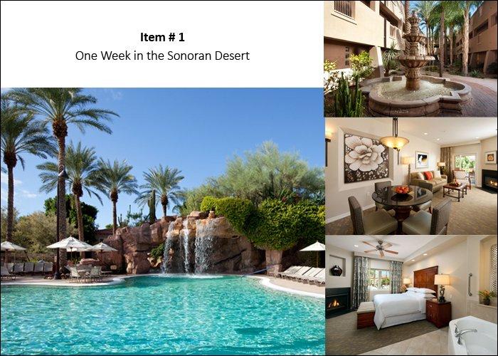 LA_Item1_Sonoran_Desert